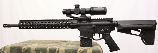 AR with Bushnell 1-4