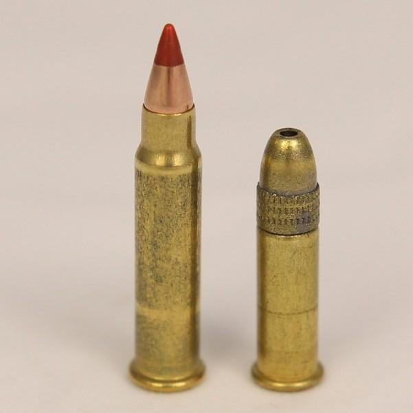 17 HMR vs 22LR