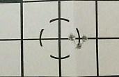 Savage 93R17 Accuracy