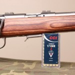 savage 17 hmr action