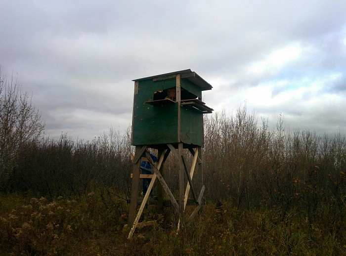 Diy elevated hunting blinds the hunting gear guy for Homemade hunting shack