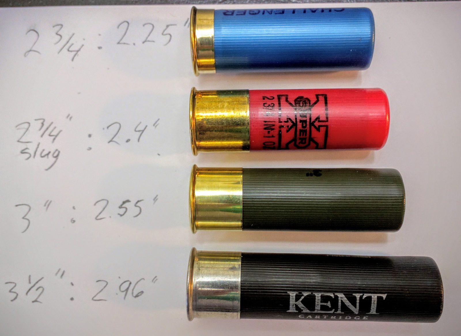 Image Result For Gauge Shotgun Shells