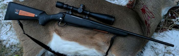 deer shot by tikka t3 lite