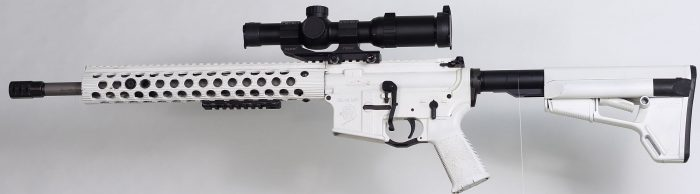 Primary Arms AR15